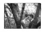 Das Album ansehen Hochzeitsfotos